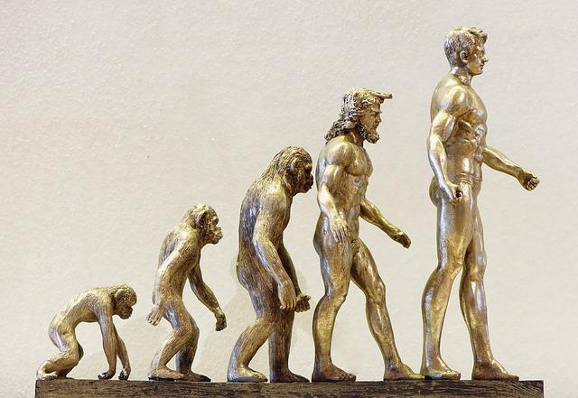 La théorie de l'évolution en business